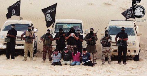 Ansar beit al-maqdis foto